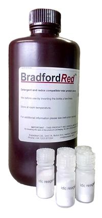 BradfordRED Kit.jpg
